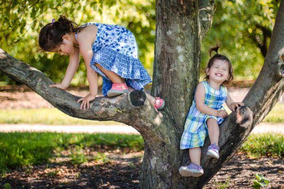 climbing_tree
